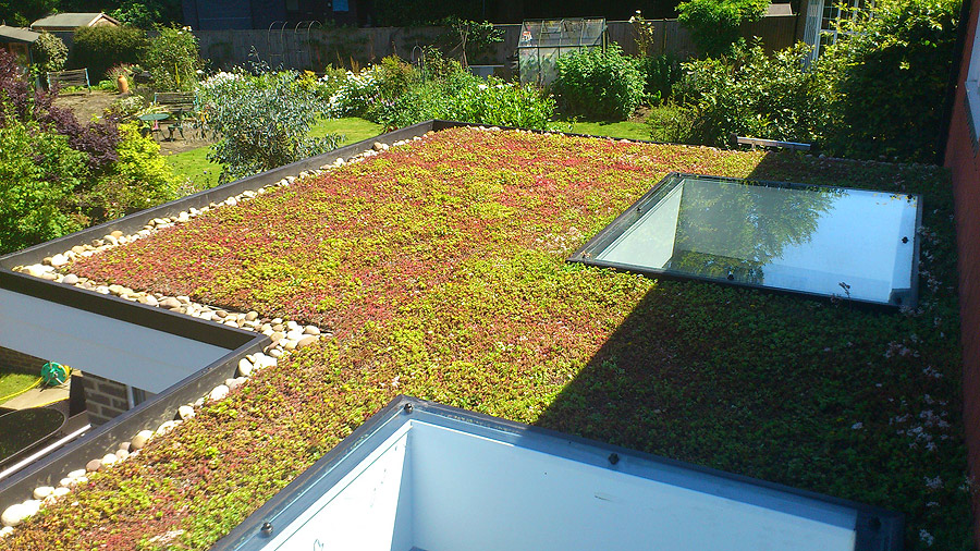 Green Roof construction, repair and replacement with a Classicbond waterproof EPDM rubber roofing membrane